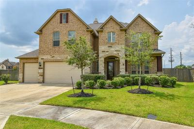 Sugar Land Single Family Home For Sale: 6006 Regal Falls Court