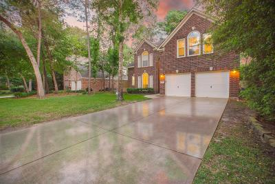 The Woodlands Single Family Home For Sale: 67 Terraglen Drive