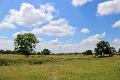 Grimes County Farm & Ranch For Sale: Tbd Fm 149, Tract 8