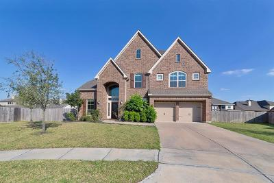 Fort Bend County Single Family Home For Sale: 1605 Enchanted Brook Court