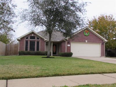 Santa Fe Single Family Home For Sale: 4214 Chisholm Trail