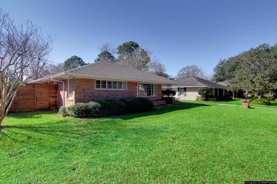 Houston Single Family Home For Sale: 3407 Deal Street