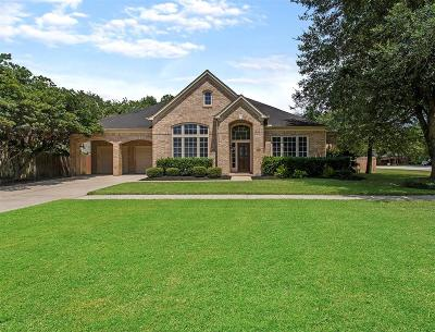 Fort Bend County Single Family Home For Sale: 3802 Dewalt Way