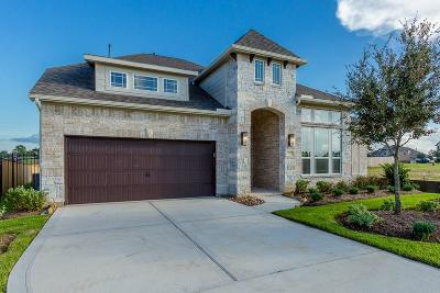 The Woodlands Single Family Home For Sale: 22 Botanical Vista Drive