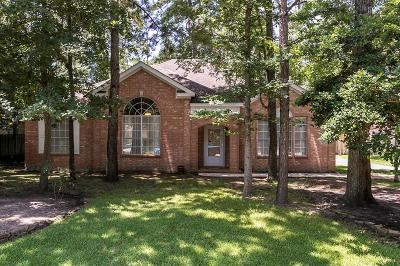 The Woodlands Single Family Home For Sale: 47 Terraglen Drive