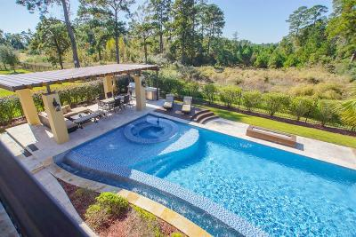 The Woodlands Single Family Home For Sale: 147 Gildwood Place