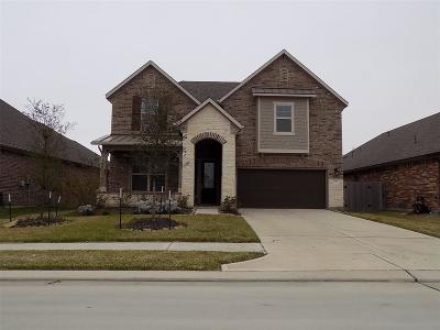 Katy Single Family Home For Sale: 5207 Lineage Drive