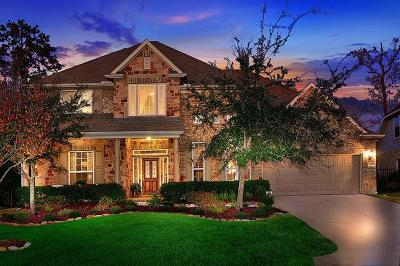 The Woodlands Single Family Home For Sale: 14 Chippewa Trail