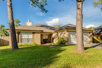 Pearland Single Family Home For Sale: 4311 Duesenberg Court