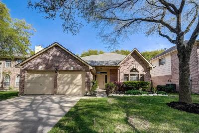Sugar Land Single Family Home For Sale: 4111 N New Meadows Drive