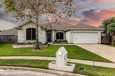 Friendswood Single Family Home For Sale: 16926 Ship Anchor Drive