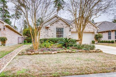 The Woodlands Single Family Home For Sale: 47 N Country Gate Circle