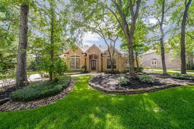 Spring Single Family Home For Sale: 154 W Coldbrook Circle