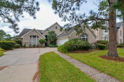 Houston Single Family Home For Sale: 7118 Mission Court Drive