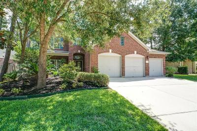 Single Family Home For Sale: 87 S Star Ridge Circle