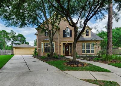 Galveston County, Harris County Single Family Home For Sale: 16602 Island Shore Court