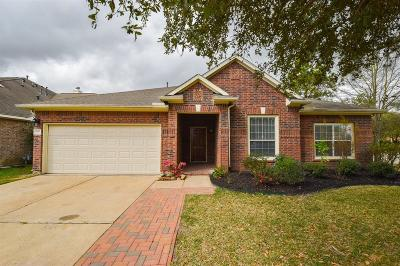 Single Family Home For Sale: 9711 Pine Bank Drive