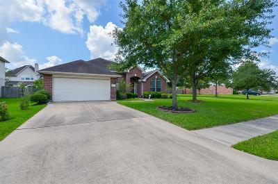 Houston Single Family Home For Sale: 6618 Trenton Lake Lane
