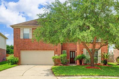 Houston Single Family Home For Sale: 5523 Saddle Bred Drive