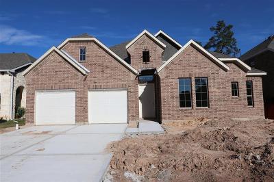Single Family Home For Sale: 27122 Ketelburg Park