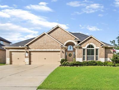 Rosenberg Single Family Home For Sale: 9202 Turnbull Lane