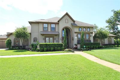 Houston Single Family Home For Sale: 6207 Majestic Hill Drive