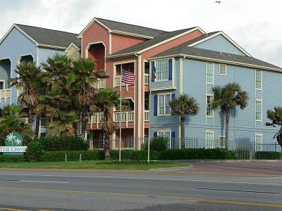 Galveston Condo/Townhouse For Sale: 7000 Seawall Boulevard #123
