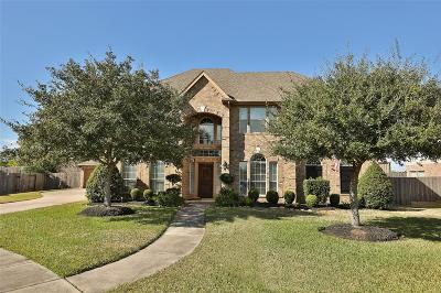 Friendswood Single Family Home For Sale: 1329 Riverrock Court