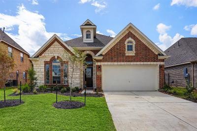 Missouri City Single Family Home For Sale: 3819 Venosa Court