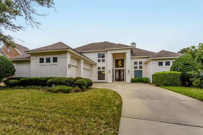 Sugar Land Single Family Home For Sale: 219 Sanderling Lane