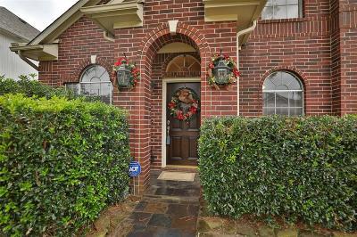 Houston Single Family Home For Sale: 10119 Cedaredge Drive