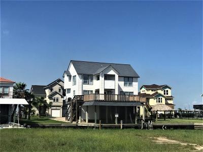 Galveston County, Harris County Single Family Home For Sale: 441 Jeanie Lynn Street