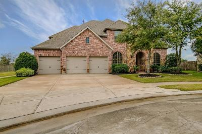 Manvel Single Family Home For Sale: 2602 Joshua Tree Lane