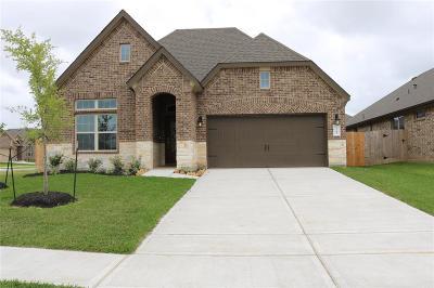 Pearland Single Family Home For Sale: 2701 S Galveston Avenue