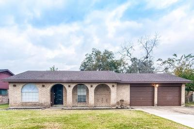 Friendswood Single Family Home For Sale: 15723 Wandering Trail