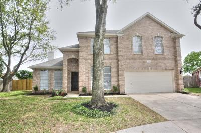 Houston Single Family Home For Sale: 10803 Rio Rancho Court