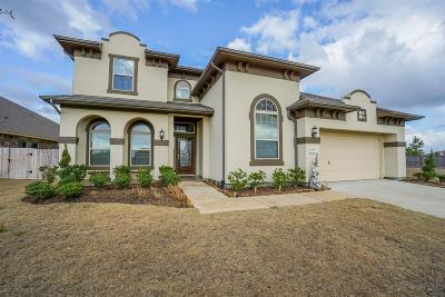 Cypress Single Family Home For Sale: 11806 Trinity Bluff Lane