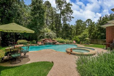 The Woodlands Single Family Home For Sale: 10 Storm Mist Place