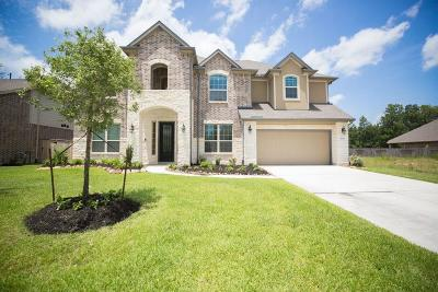 New Caney Single Family Home For Sale: 18844 Collins View Drive
