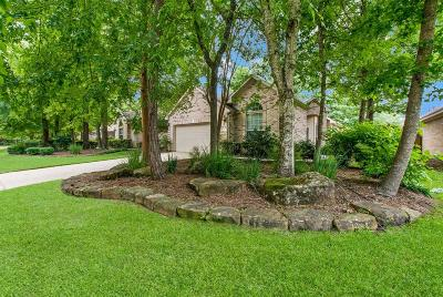 The Woodlands Single Family Home For Sale: 11 N Country Gate Circle