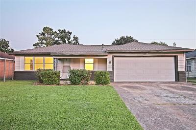 Harris County Single Family Home For Sale: 610 Alta Vista Drive