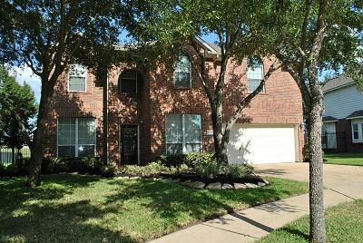 Houston Single Family Home For Sale: 11506 Aucuba Lane