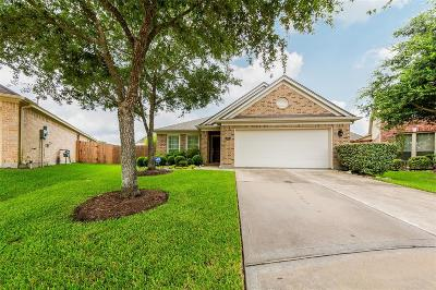 Pearland Single Family Home For Sale: 2807 Highland Lake Court