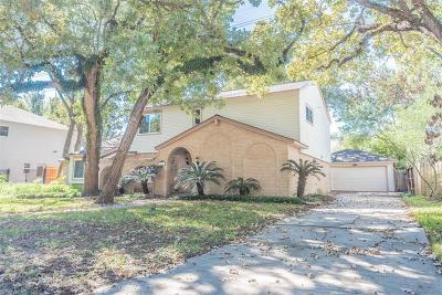 Houston Single Family Home For Sale: 719 Langwood Drive