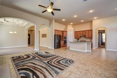 Pearland Single Family Home For Sale: 2507 Scarlett Trace