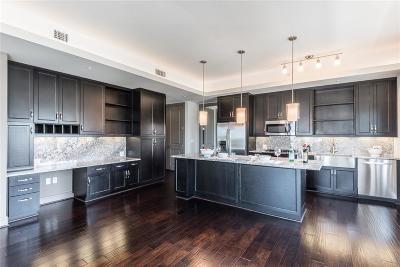 Harris County Rental For Rent: 4 S Chelsea Boulevard #815