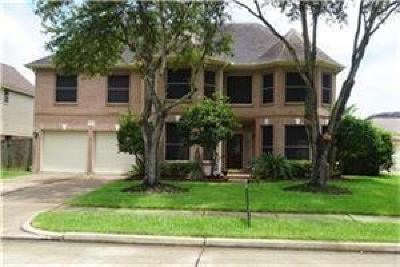 Sugar Land Single Family Home For Sale: 12003 McKinney Falls Lane