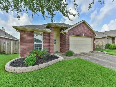 Cypress Single Family Home For Sale: 16811 Empty Ness Drive
