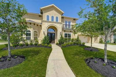 Katy Single Family Home For Sale: 2018 Greenvine Circle