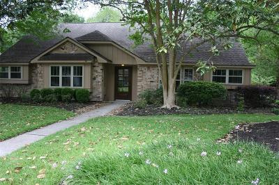 Houston Single Family Home For Sale: 21219 Lazy Ravine Lane